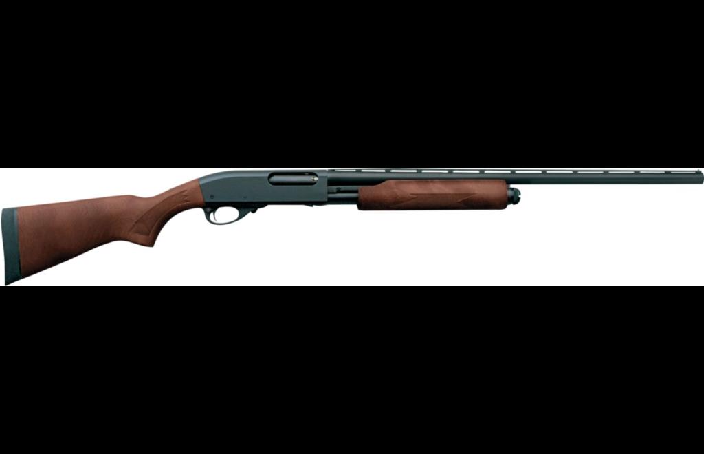 best beginner shotgun